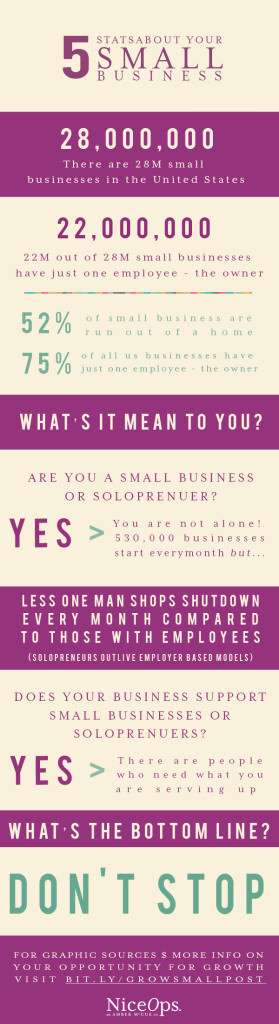 Small Business Opportunity Info Graphic2